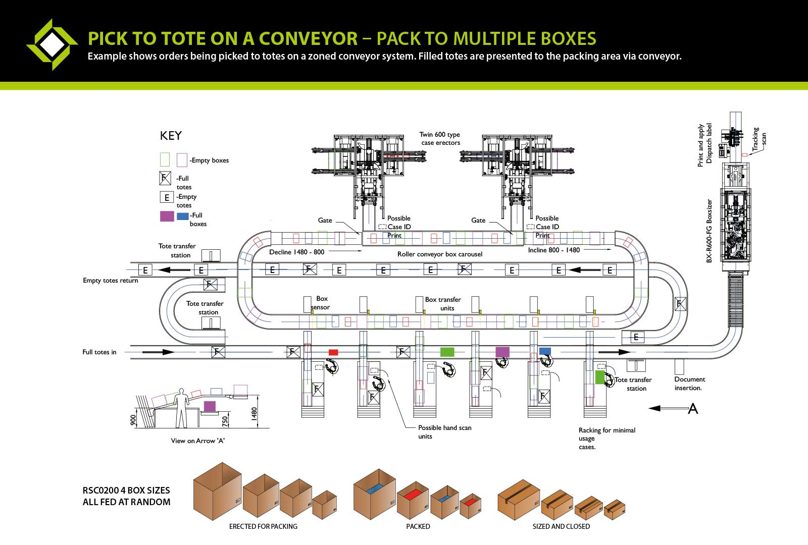 Pick to Tote on a Conveyor - Pack to Multiple Boxes ecom packaging line