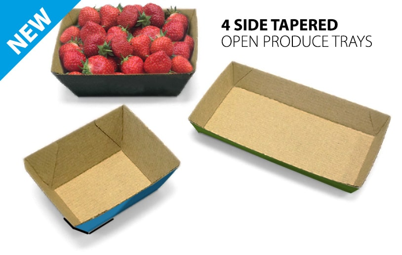 Cardboard Tapered Punnet Produce Tray Erector image