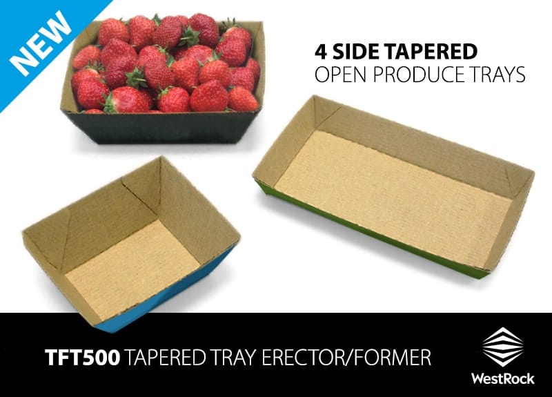 WestRock APS new TFT500 erects small 4-corner tapered trays for produce such as fruit, mushrooms, berries and herbs image